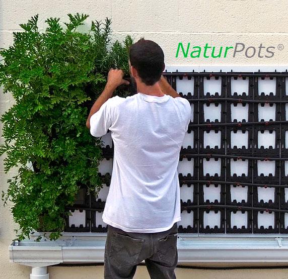 instalar-jardin-vertical modular -